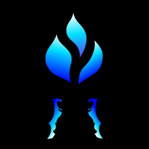 Logo TOGT